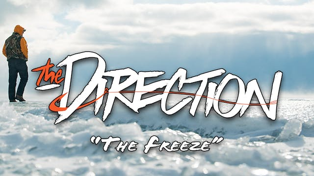 The Freeze • The Direction