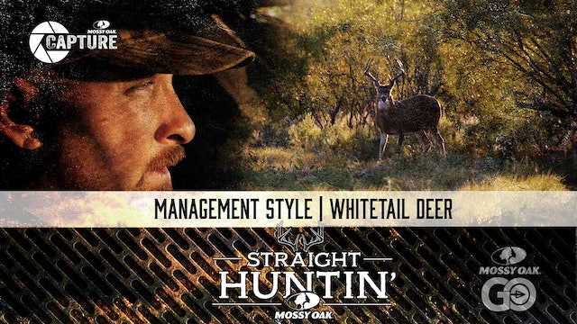 Management Style • Whitetail Deer • Straight Huntin'