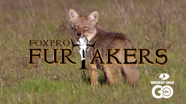 FOXPRO 1203 Oregon • Furtakers