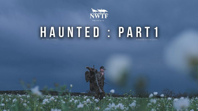 Haunted Pt. 1 • Chasing 49