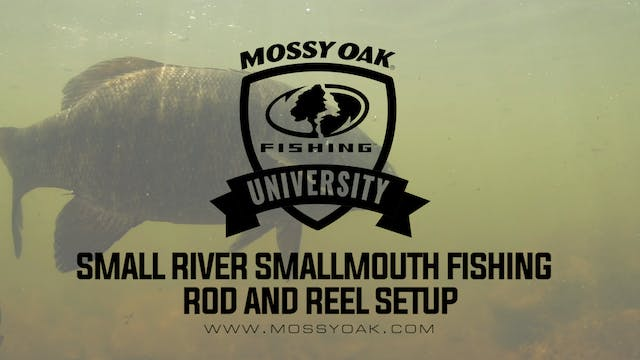 Best Rod And Reel For Fishing For Sma...