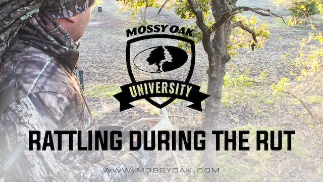 Rattling During The Rut | Whitetail C...