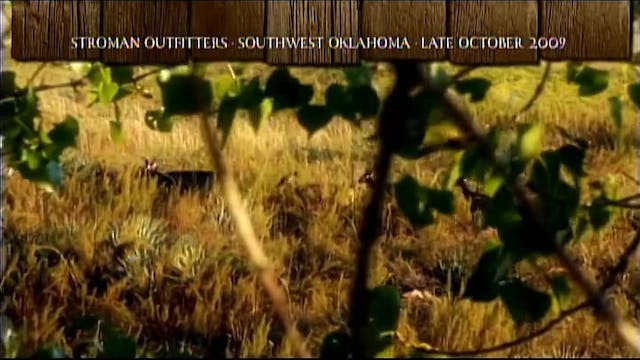 Father Knows Best • Whitetails and Mu...