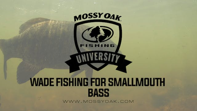 Wade Fishing For Smallmouth Bass