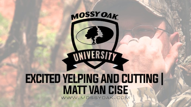 Excited Yelping and Cutting Combined - Matt Van Cise
