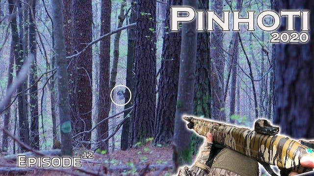 Pinhoti 2020 Ep 12 • Pinhoti Project