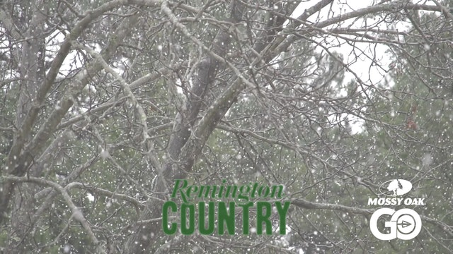 Thanksgiving Whitetails • Remington Country
