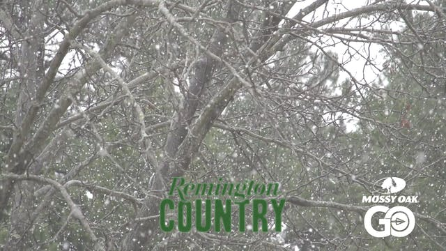 Thanksgiving Whitetails • Remington C...