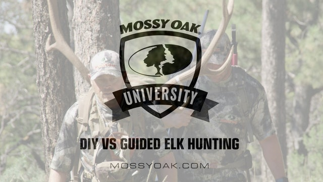 DIY vs Guided Elk Hunting • Mossy Oak University