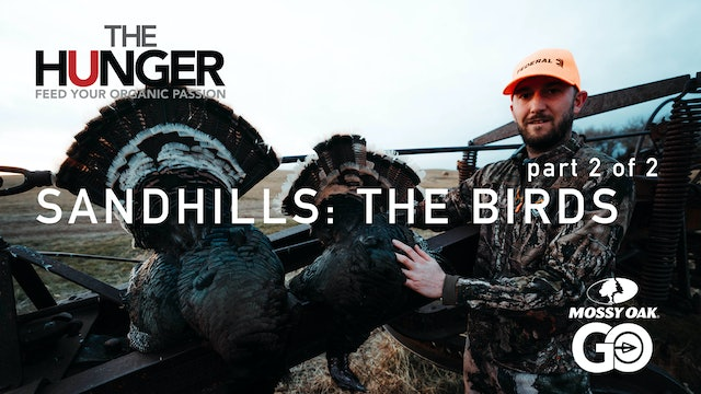 Sandhills • The Birds (Part 2 of 2) • The Hunger