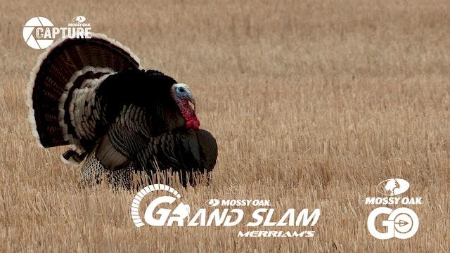 Grand Slam • Episode 9 • Merriams