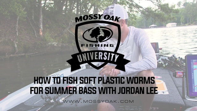 How to Fish Plastic Worms for Summer Bass