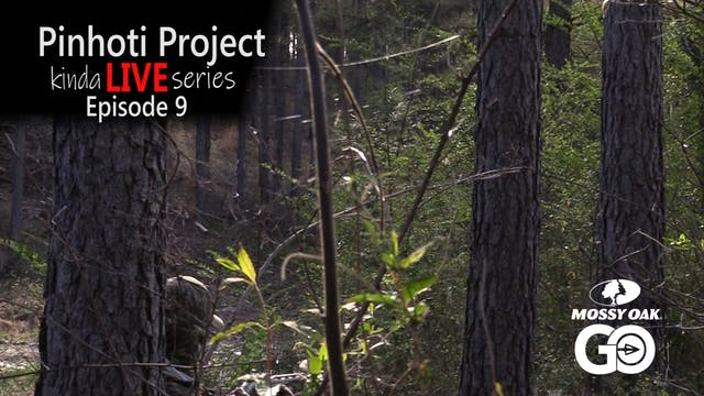 Kinda Live • Episode 9 • Pinhoti Project