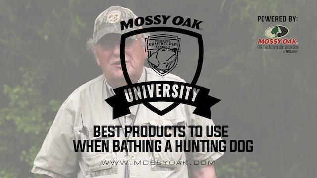 Best Dog Bathing Products