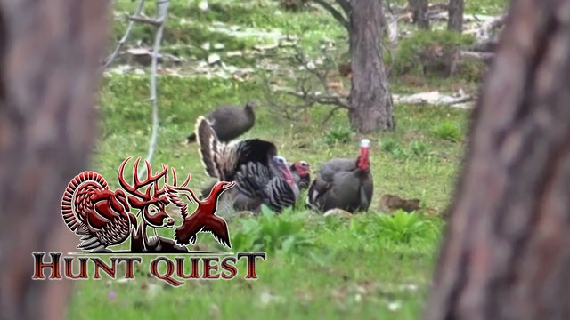 South Dakota Merriams Part 1 • Hunt Quest