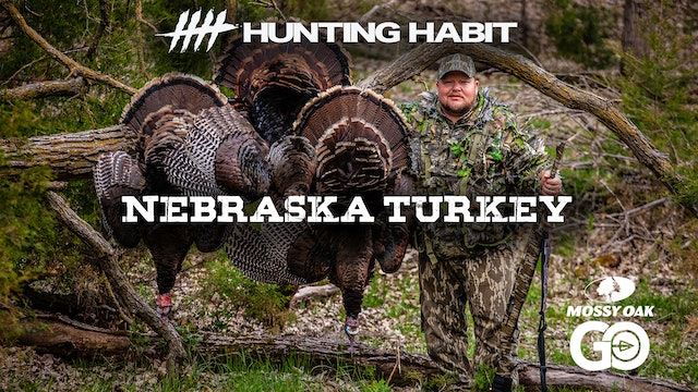 Hunting Habit · Nebraska Turkey