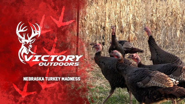 Nebraska Turkey Madness • Victory Out...