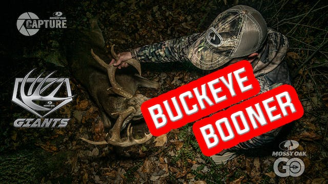 Giants • Buckeye Booner
