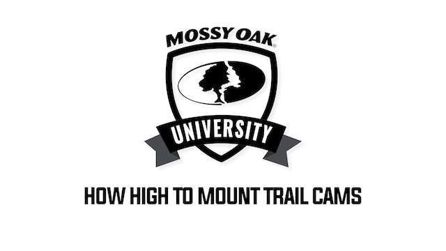 Tip 6-How High Or Low To Mount Cam