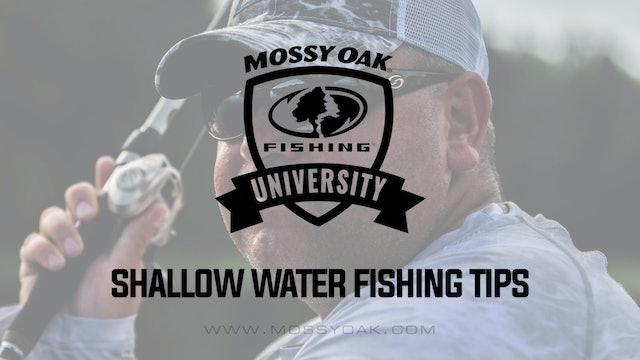 Shallow Water Bass Fishing Tips