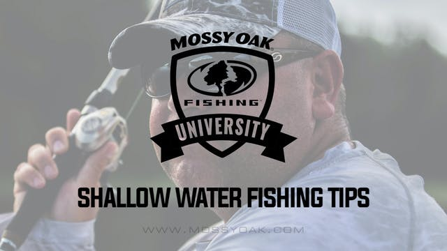 Shallow Water Bass Fishing Tips