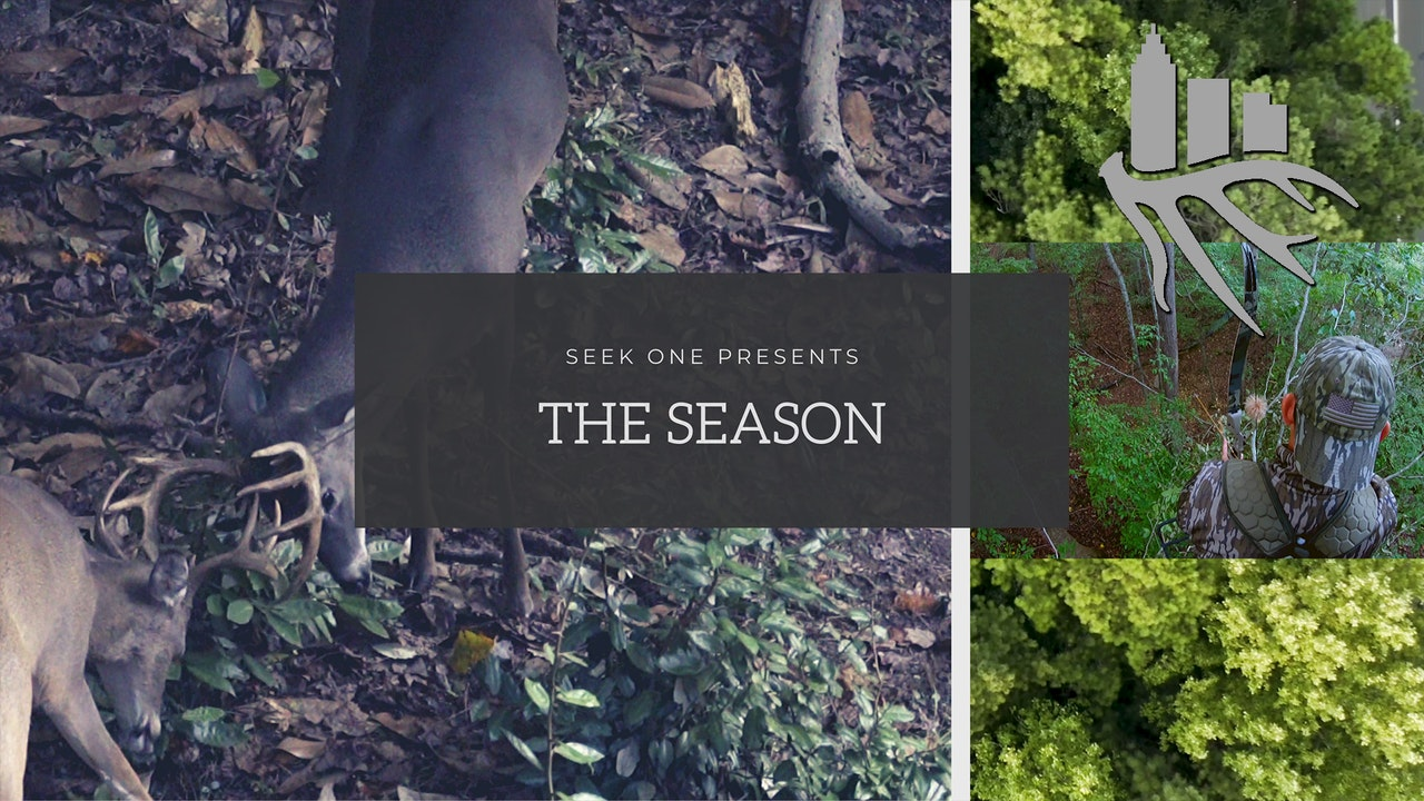 Seek One Presents: The Season