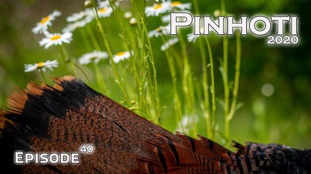 Pinhoti 2020 Ep 40 • Pinhoti Project