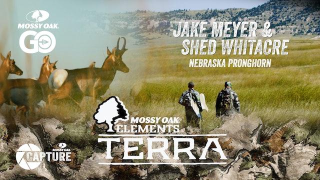 Jake and Shed – Nebraska Pronghorn • Terra