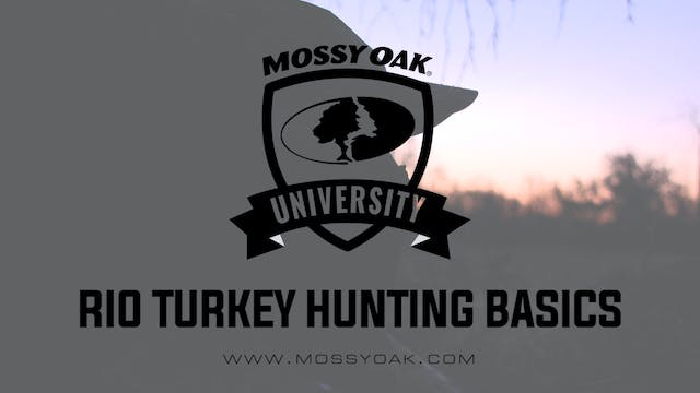 Rio Turkey Hunting Basics