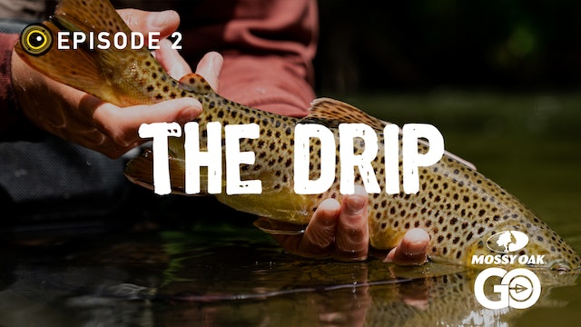 Episode 2 • The Drip
