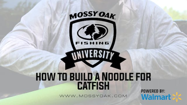 DIY Best Homemade Catfish Noodles - J...