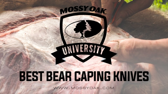 Bear Caping and Processing Tools