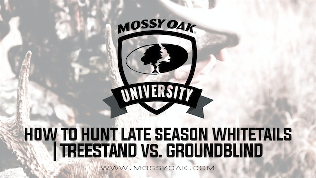 How To Hunt Late Season Whitetails • Treestand vs. Ground Blind