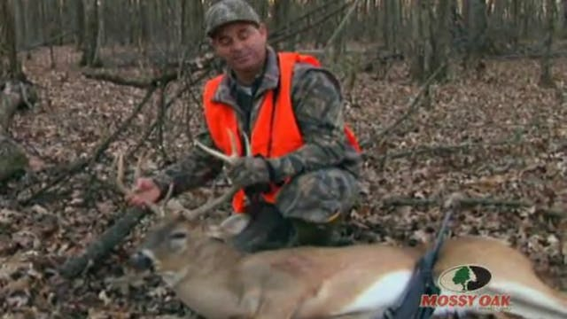 Mississippi Delta Deer • Big Bucks on...