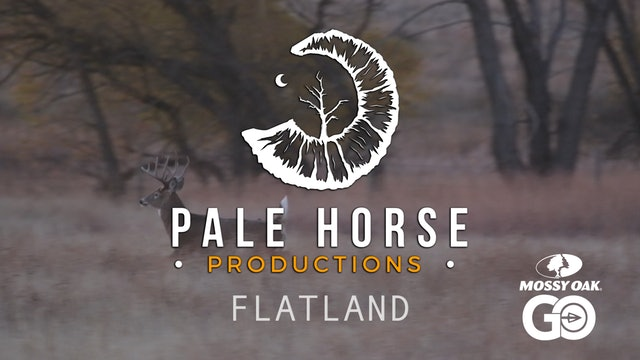 Flatland • Pale Horse