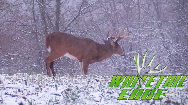 Lazy 10 • Whitetail Edge