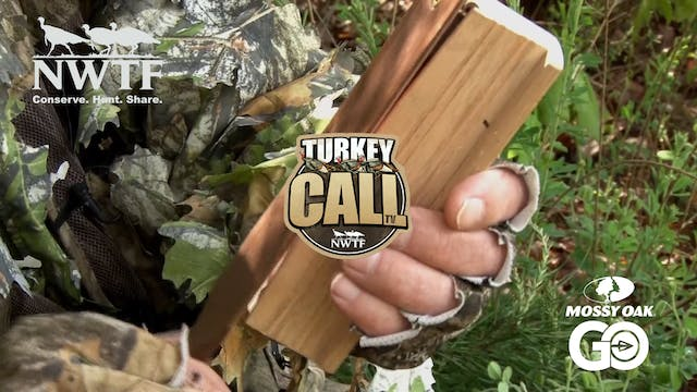 NWTF's  Turkey Call