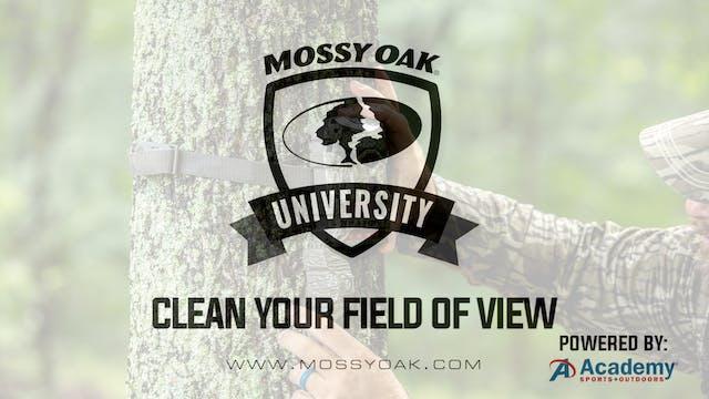 Clean Your Field Of View