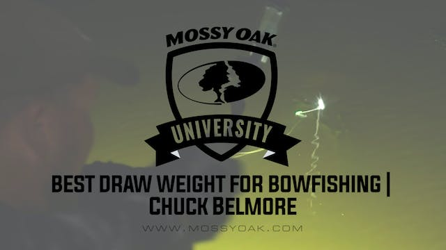 Best Draw Weight for Bow Fishing Bows...