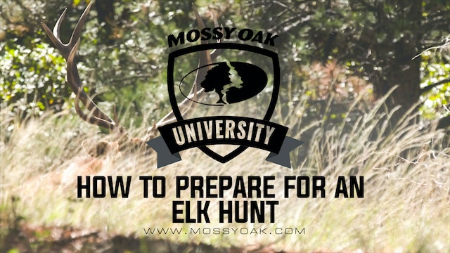 How to Prepare for an Elk Hunt