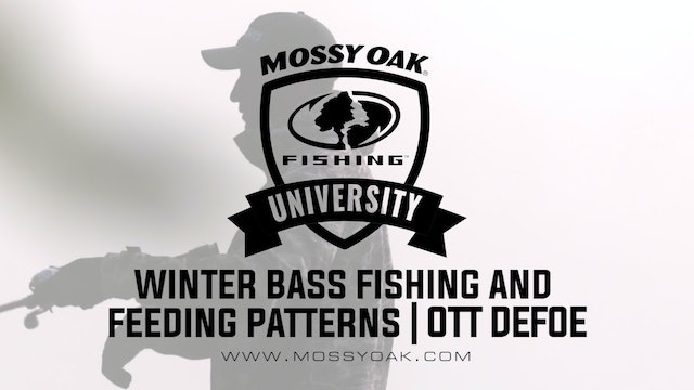 What Do Bass Eat in the Winter - Ott DeFoe Fishing Tips