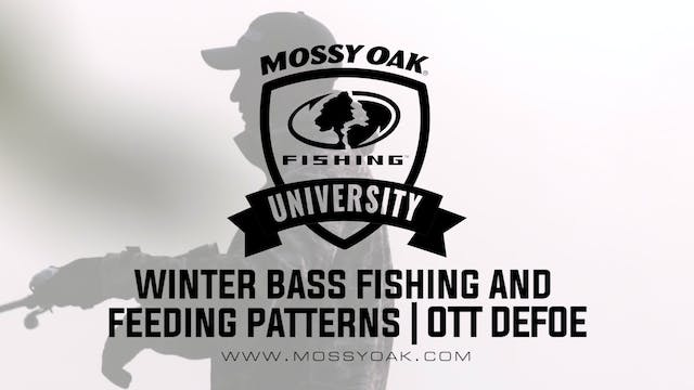 What Do Bass Eat in the Winter - Ott ...