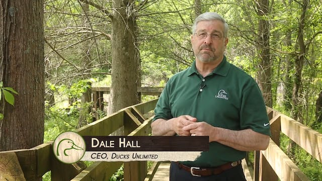 Ontario Geese & Wood Ducks  • DU TV
