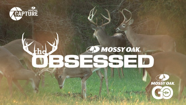 The Obsessed • Deer