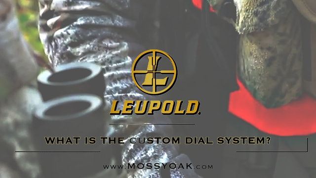What is the Custom Dial System