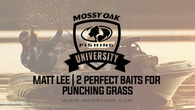 Two Key Lures For Punching Grass With Matt Lee