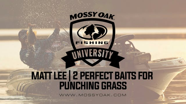 Two Key Lures For Punching Grass With...