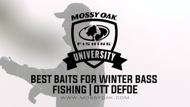 What Baits to Use in the Winter - Ott DeFoe Fishing Tips