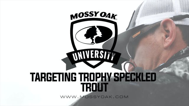 Targeting Trophy Speckled Trout • The...