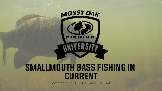 Small River Smallmouth Bass • How To Fish A Current And Why